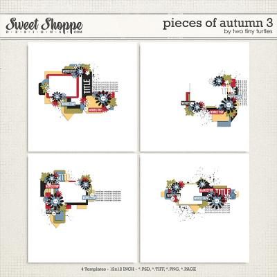 Pieces Of Autumn 3 by Two Tiny Turtles