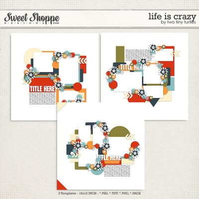 Life Is Crazy by Two Tiny Turtles