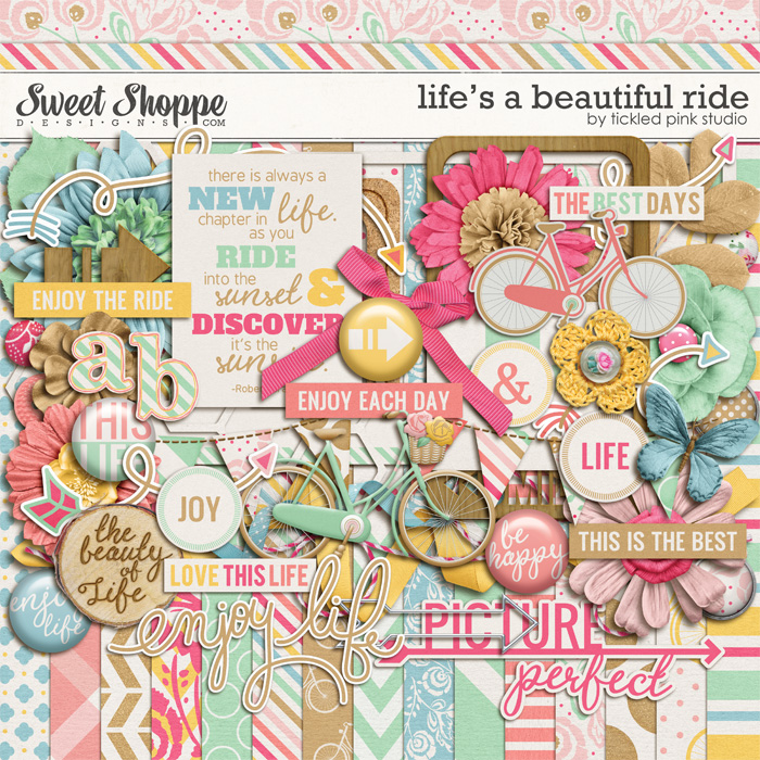 Life's A Beautiful Ride by Tickled Pink Studio