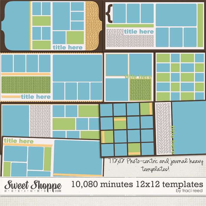 10,080 Minutes 12x24 Template Album by Traci Reed