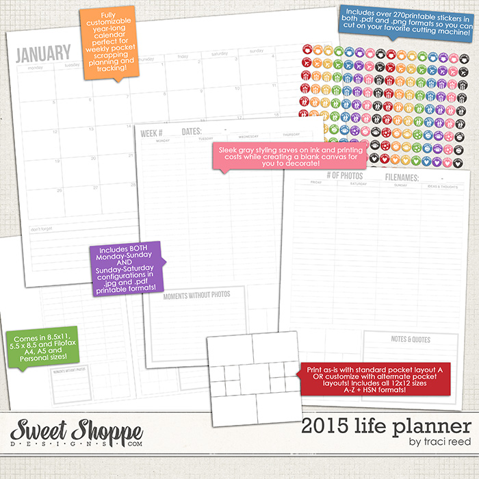 2015 Life Planner by Traci Reed