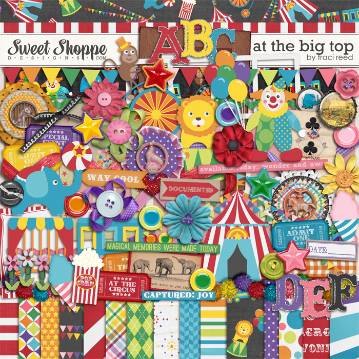 At The Big Top by Traci Reed