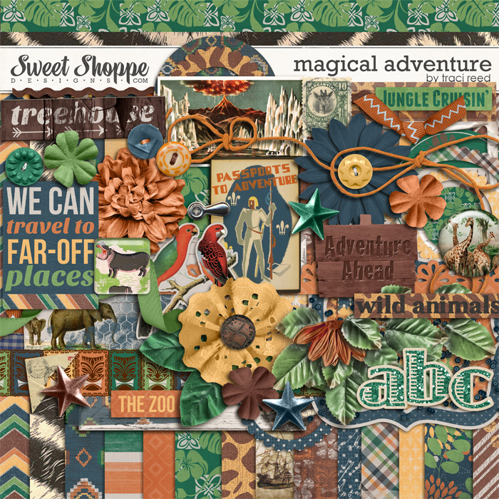 Magical Adventure by Traci Reed