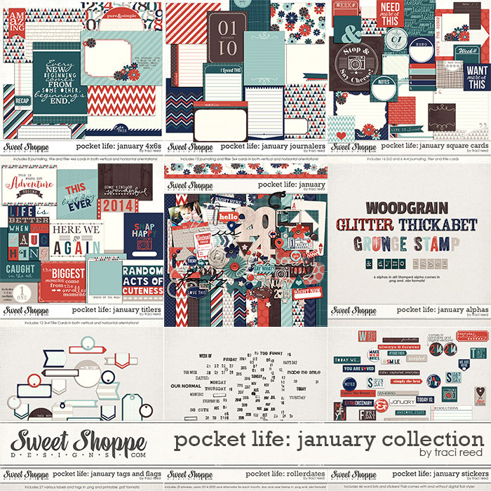Pocket Life: January Collection by Traci Reed