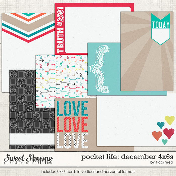 Pocket Life: December 4x6s by Traci Reed