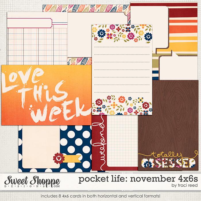 Pocket Life: November 4x6s by Traci Reed