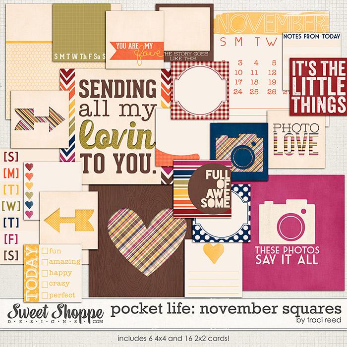 Pocket Life: November Squares by Traci Reed