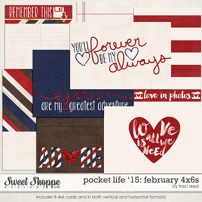 Pocket Life '15: February 4x6s by Traci Reed