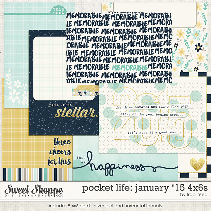 Pocket Life '15: January 4x6s by Traci Reed