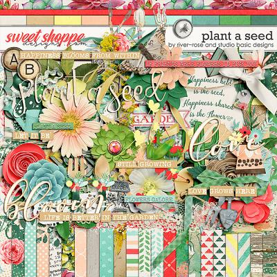 Plant A Seed Kit by River Rose & Studio Basic Designs