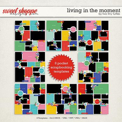 Living In The Moment by Two Tiny Turtles