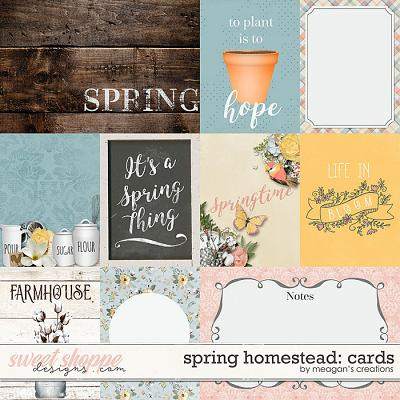 Spring Homestead: Cards by Meagan's Creations