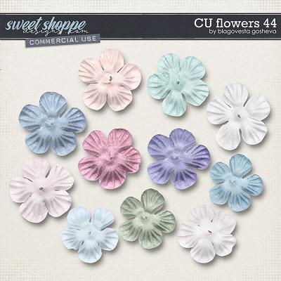 CU Flowers 44 by Blagovesta Gosheva