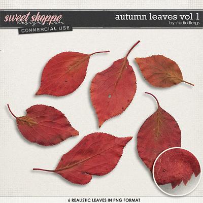 Auntumn Leaves VOL 1 by Studio Flergs