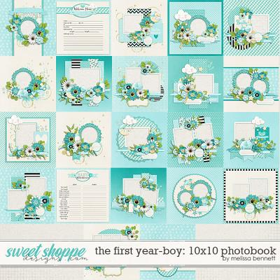 The First Year-Boy 10x10 Photobook by Melissa Bennett