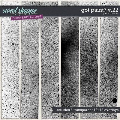 Got Paint? v.22 by Erica Zane