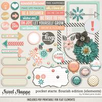 Pocket Starts: Flourish Edition Elements by Tickled Pink Studio
