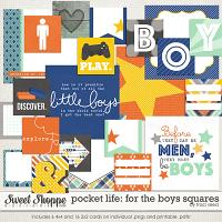 Pocket Life: For The Boys Squares by Traci Reed