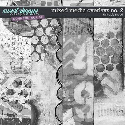 CU Mixed Media Overlays no. 2 by Tracie Stroud