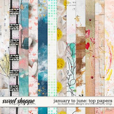 January To June: Top Papers by Studio Basic & Little Butterfly Wings
