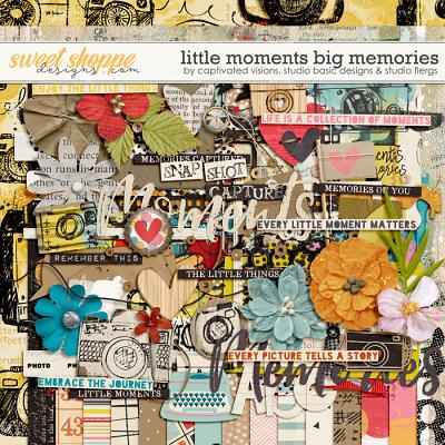 Little Moments Big Memories by Captivated Visions, Studio Basic & Studio Flergs
