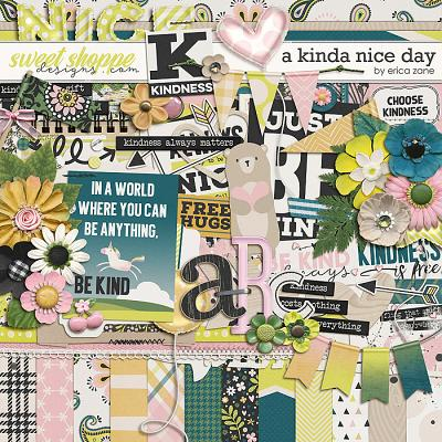 A Kinda Nice Day by Erica Zane