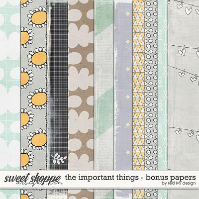 The Important Things - Bonus Papers