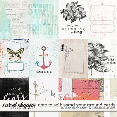Note To Self: Stand Your Ground Cards by Kristin Cronin-Barrow & Studio Basic
