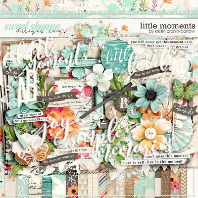 Little Moments by Kristin Cronin-Barrow