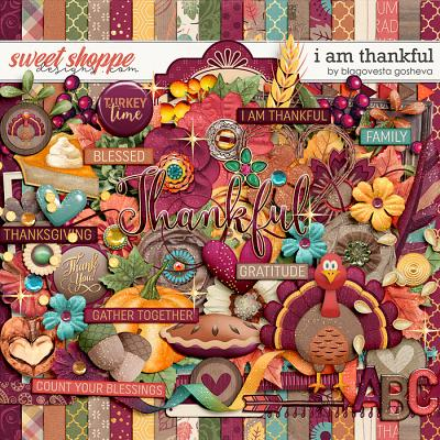 I Am Thankful by Blagovesta Gosheva