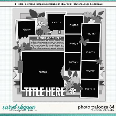 Cindy's Layered Templates - Photo Palooza 34 by Cindy Schneider