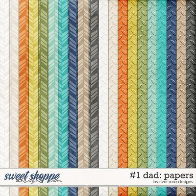 Number 1 Dad: Papers by River Rose Designs