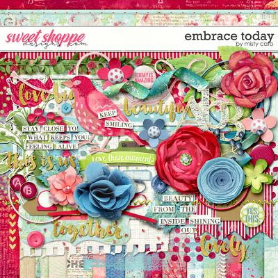 Embrace Today by Misty Cato
