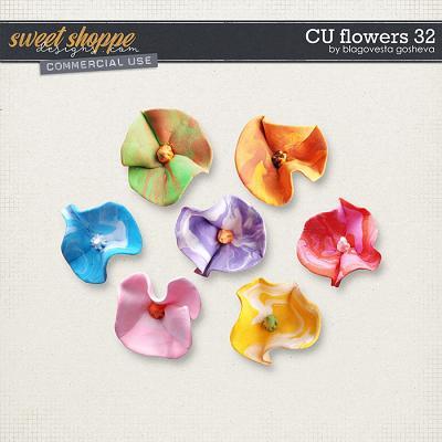 CU Flowers 32 by Blagovesta Gosheva