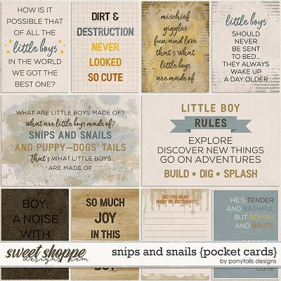Snips and Snails Pocket Cards by Ponytails