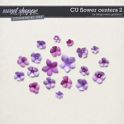 CU Flowers centers 2 by Blagovesta Gosheva