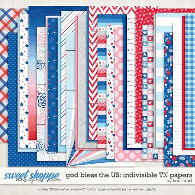 God Bless The US: Indivisible TN Papers by Traci Reed