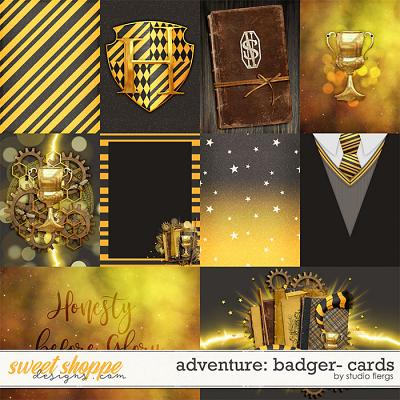Adventure: Badger- CARDS by Studio Flergs