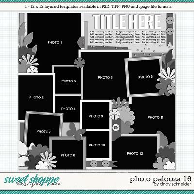 Cindy's Layered Templates - Photo Palooza 16 by Cindy Schneider