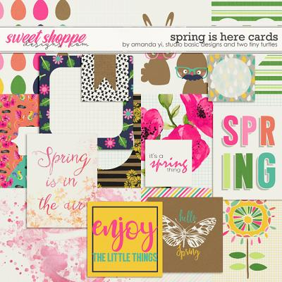 Spring Is Here Cards by Amanda Yi, Studio Basic Designs & Two Tiny Turtles