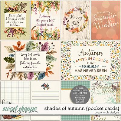 Shades of Autumn Pocket Cards by Ponytails