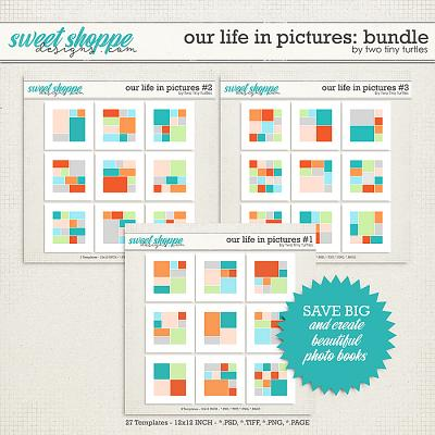 Our Life In Pictures: Bundle by Two Tiny Turtles