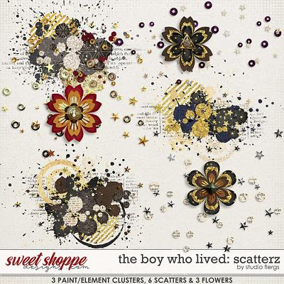 The Boy Who Lived: SCATTERZ by Studio Flergs