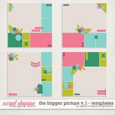 The Bigger Picture Templates Vol.1 by Digital Scrapbook Ingredients
