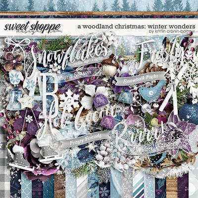 A Woodland Christmas: Winter Wonders by Kristin Cronin-Barrow