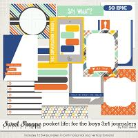 Pocket Life: For The Boys 3x4 Journalers by Traci Reed