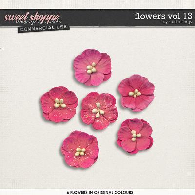 Flowers VOL 13 by Studio Flergs