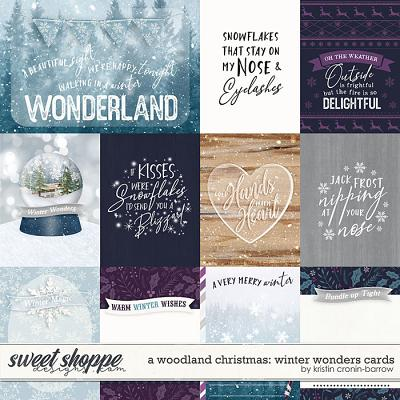 A Woodland Christmas: Winter Wonders Cards by Kristin Cronin-Barrow