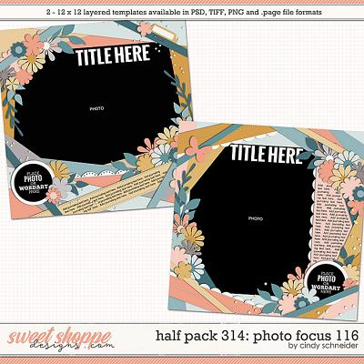 Cindy's Layered Templates - Half Pack 314: Photo Focus 116 by Cindy Schneider