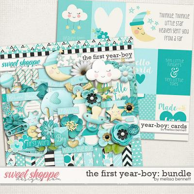The First Year-Boy: Bundle by Melissa Bennett